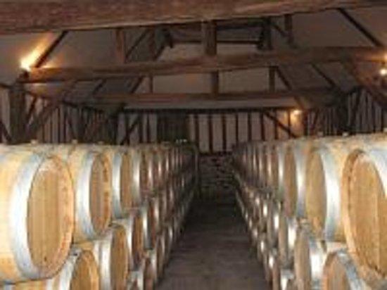 Saint-Macaire-du-Bois, Francia: Anjou Village wines ageing in barrels