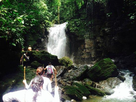 Suchipakari Amazon Rainforest Ecolodge: Waterfall