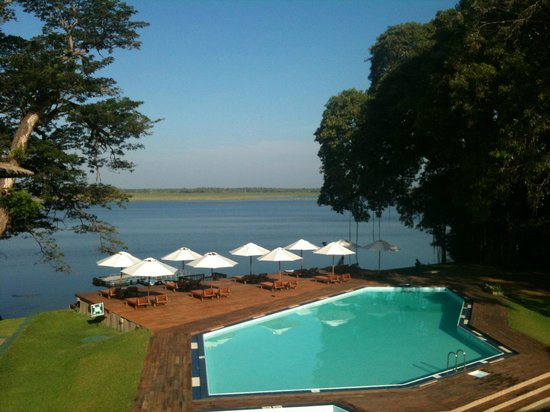 The Safari Hotel: The best place to be…...