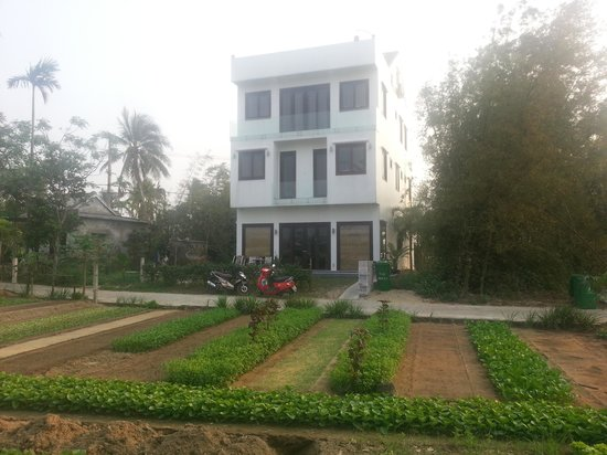Belle Maison Moderne Picture Of Friendly Guesthouse Hoi An