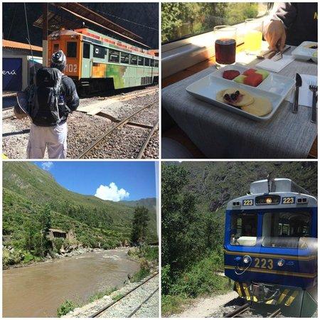PeruRail - Vistadome: Trem
