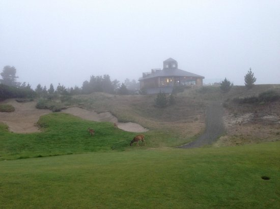 Bandon Dunes Golf Resort: 18th hole at Pacific Dunes in the fog