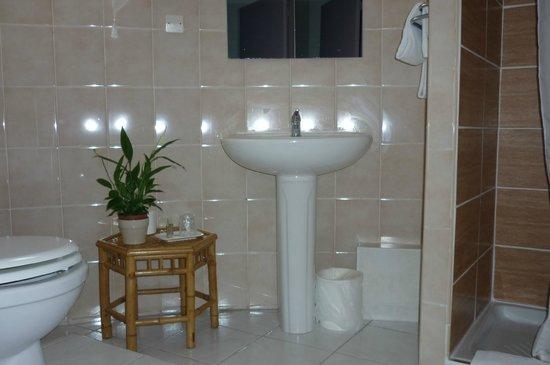 Hôtel de L'hôspitalet Saint Charles : Salle de bain chambre double