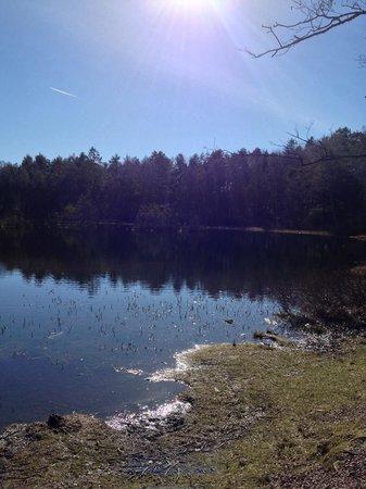 Anggardsbergens Naturreservat: Lake