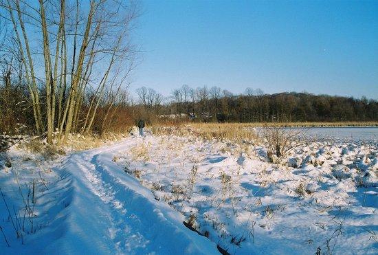 Herrick Fen Nature Preserve