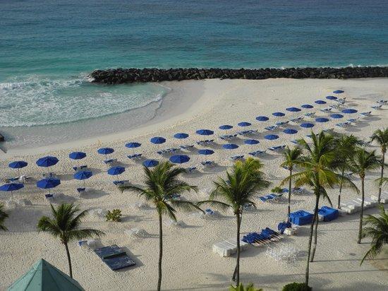 Hilton Barbados Resort: Praia do Hilton