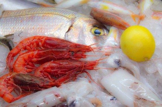 Saga Fish Restaurant: Φρέσκα ψάρια
