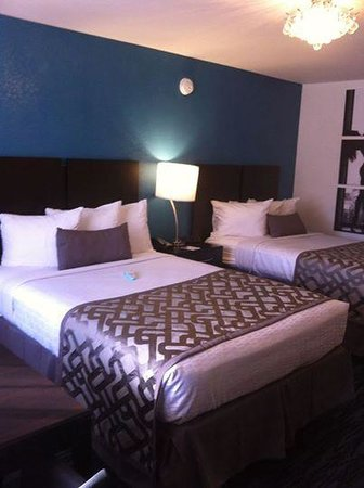 Clarion Inn : New rooms