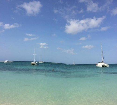 Talk of the Town Hotel & Beach Club : Mas Surfside Beach