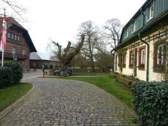 Romantik Hotel Linslerhof: Area around the hotel