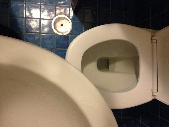 Hotel Nuovo Rebecchino: WC e LAVABO