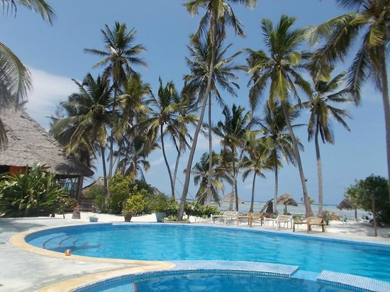 Echo Beach Hotel: Echo Beach pool and palms
