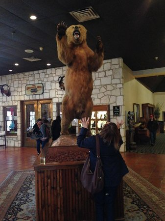 Y O Ranch Hotel & Conference Center : Bear