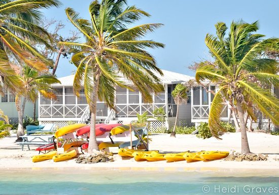 Blackbird Caye Resort: view