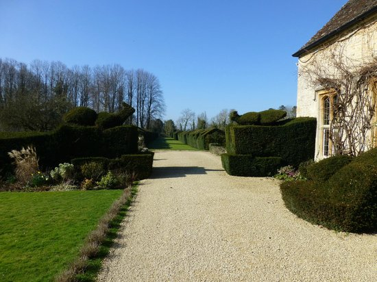 The Manor: Garden view