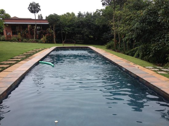 Ambience Inn : piscine en couloir de natation