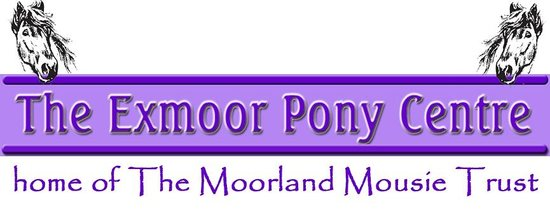 The Exmoor Pony Centre - home of The Moorland Mousie Trust