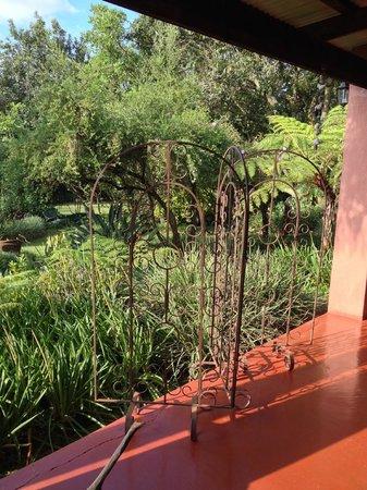 Ambience Inn : jardin