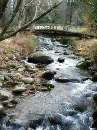 Quality Inn Creekside: Creek
