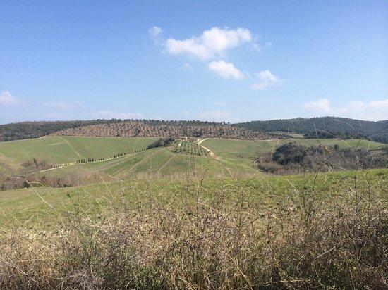 Azienda Agraria Le Crete Agriturismo: la valle