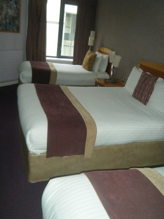 Newpark Hotel: Room