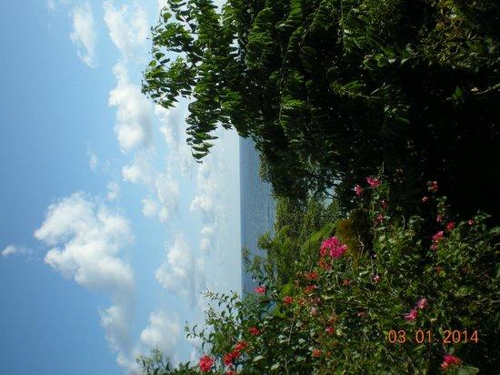Lookout Inn Lodge: views