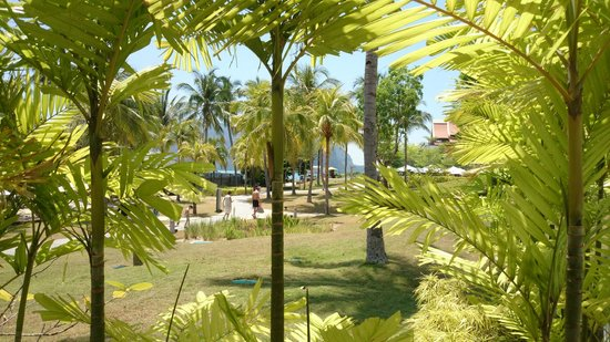 The Westin Langkawi Resort & Spa : in the garden