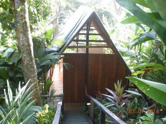 Lookout Inn Lodge : Tikik hut