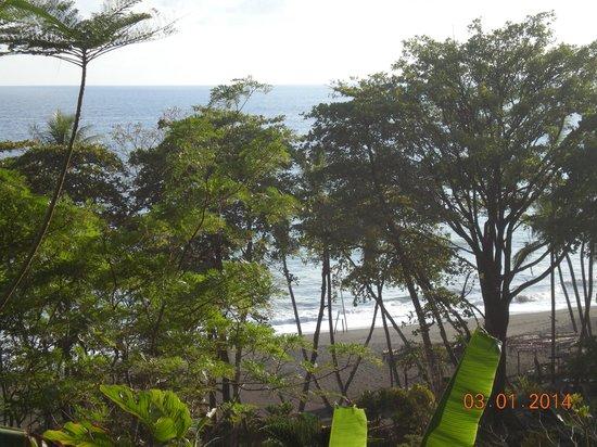 Lookout Inn Lodge : views