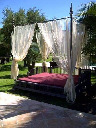 Sahara Palace Marrakech : Pool Area