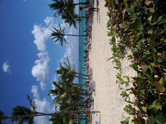 Hotel Riu Palace Punta Cana : Beach