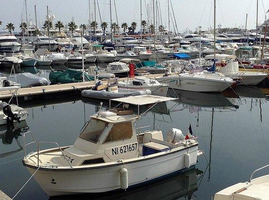 Le Bistrot du port : Вид на порт Гольф-Жуана с открытой террасы ресторана Le Bistrot du por