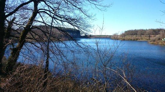 Domaine Co d' Esperou: Lac de pêche