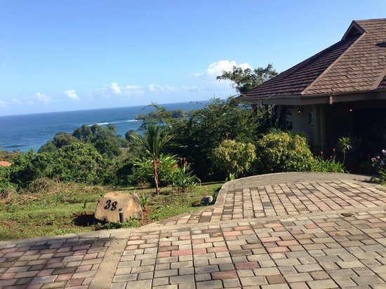 Red Frog Beach Island Resort & Spa : We could see the water from our Villa