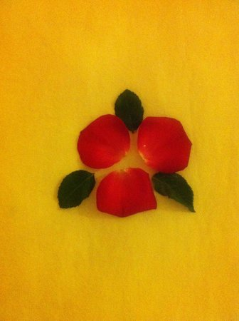 Hue Four Seasons Hotel : Nice wee flowers left on bed