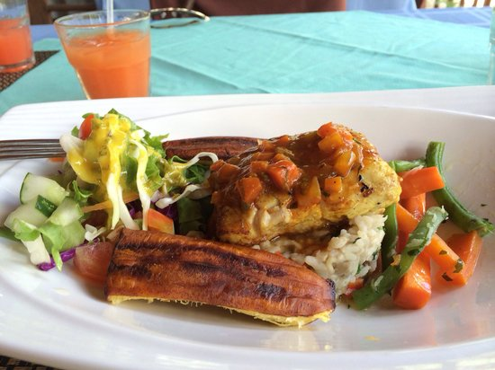 Divine Delightz : Fish of the day mahi mahi amazing! On top of rice and lentils. With roasted plantains and veggie