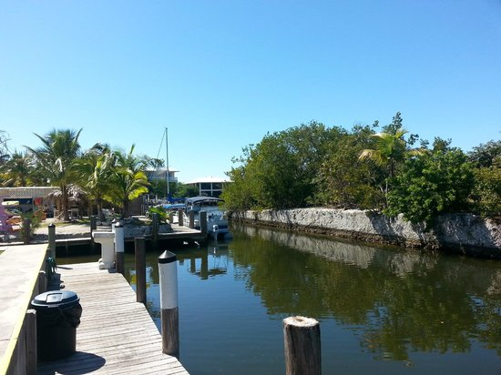 Coconut Cay Resort & Marina : Looking up canal which leads to bay from our deck