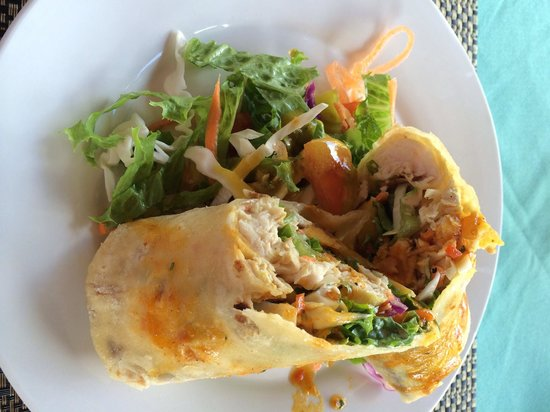 Divine Delightz : This fish wrap is possibly one of my favorite lunches. It had veggies and roasted plantains. Lov