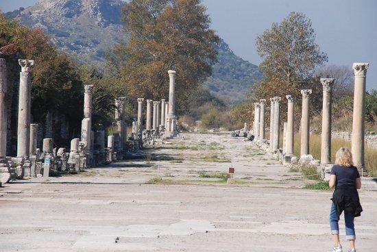 Vieille ville d'Éphèse : Ancient City of Ephesus