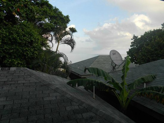 Las Rocas Resort & Dive Center: Vista da varanda do meu quarto