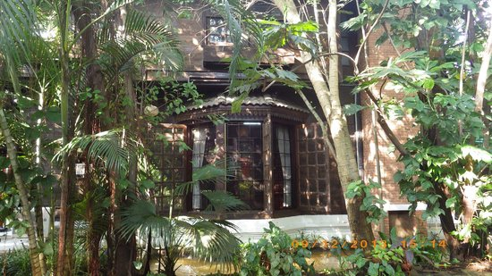 Bungalows Guesthouse: main house from trees