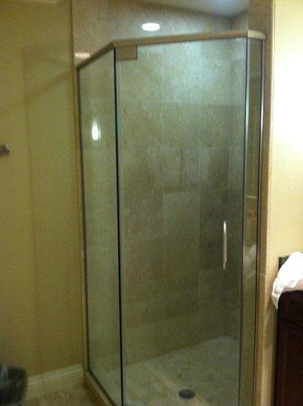Emerald Grande at HarborWalk Village: Shower master bath
