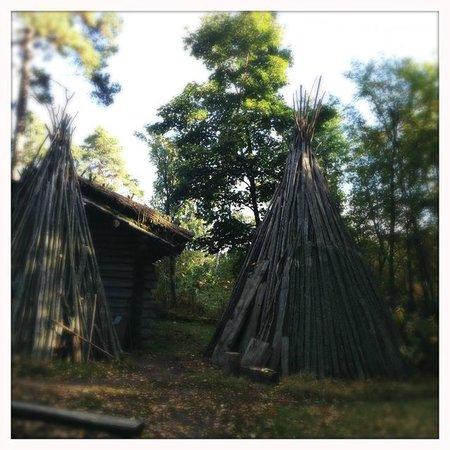 Museo al aire libre de Seurasaari: Pukkisaari