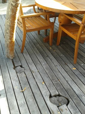 Petit St. Vincent Resort: holes on decking