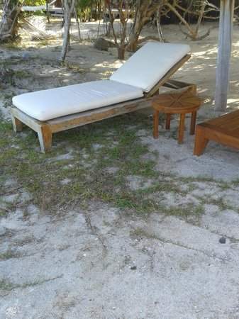 Petit St. Vincent Resort : scrubby beach area
