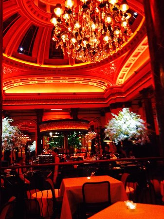 The Dome : Opulent surroundings