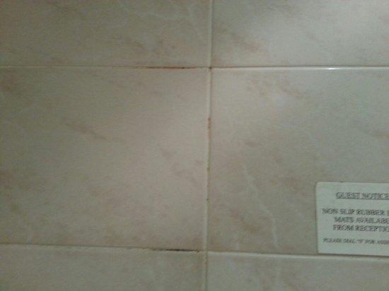 Mercure Shrewsbury Albrighton Hall Hotel and Spa: More mold on tiles in bathroom!