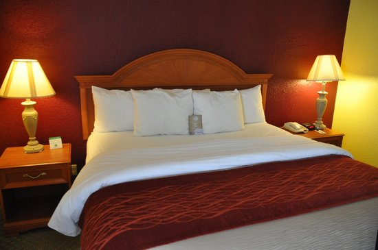 Comfort Inn & Suites Airport: Bedroom