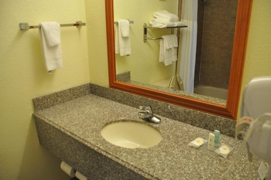 Comfort Inn & Suites Airport: Bath