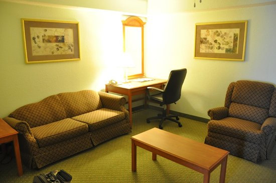 Comfort Inn & Suites Airport: Sitting Area